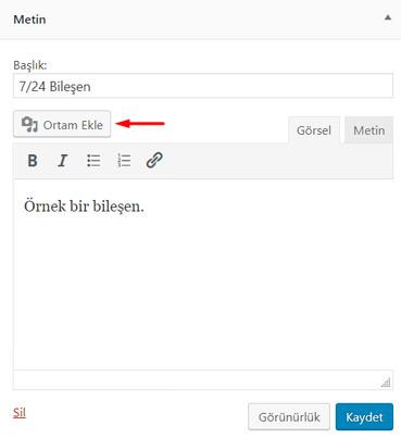 wordpress metin bileşeni